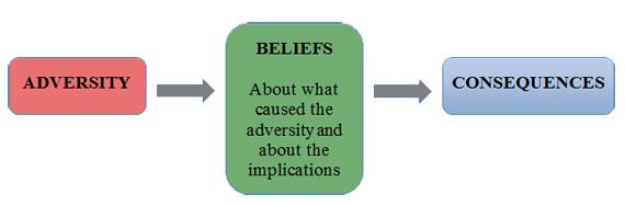 Adversity Beliefs and Consequence